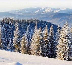 Oferte la schi hoteluri in Banya Bulgaria